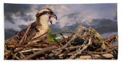 Osprey Talk Bath Towel
