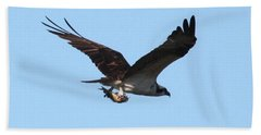 Osprey With Fish Hand Towel by Carol Groenen