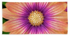 Osteospermum Serenity Blushing Beauty Hand Towel