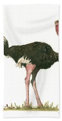 Ostrich Bird Hand Towel by Juan Bosco