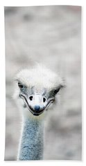 Ostrich Hand Towels