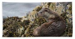 Otter Relaxing On Rocks Hand Towel