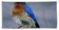 Our Own Mad Blue Bird Bath Towel by Betty Pieper