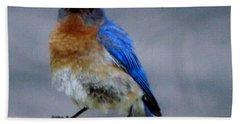 Our Own Mad Blue Bird Bath Towel