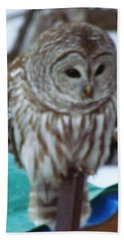 Our Own Owl Hand Towel by Betty Pieper