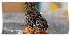 Owl Butterfly, Caligo Memnon Bath Towel