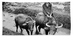 Hand Towel featuring the photograph Oxen Day Off.cambodia Bw by Jennie Breeze