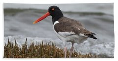 Oyster Catcher Hand Towel