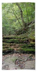 Ozark Creek Bath Towel
