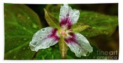 Painted Trillium With Raindrops Hand Towel