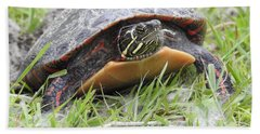 Hand Towel featuring the photograph Painted Turtle by Betty-Anne McDonald