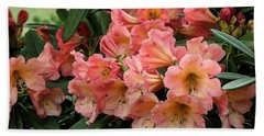 Bath Towel featuring the photograph Painterly Rhododendron Grouping by Chris Anderson