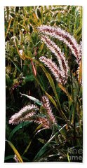 Palmer Amaranth Pig Weed In Sunlight Bath Towel