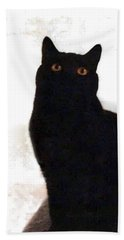 Panther The British Shorthair Cat Hand Towel