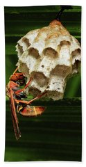 Paper Wasps 00666 Bath Towel by Kevin Chippindall