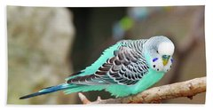 Parakeet  Hand Towel by Inspirational Photo Creations Audrey Woods