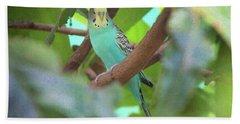 Parakeet Hand Towel