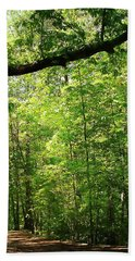 Paris Mountain State Park South Carolina Hand Towel