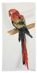 Parrot Bath Towel by Christine Lathrop
