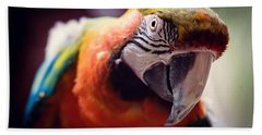 Parrot Selfie Hand Towel