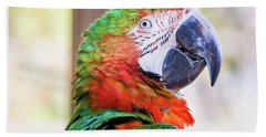 Parrot Bath Towel by Stephanie Hayes