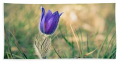 Pasque Flower Hand Towel