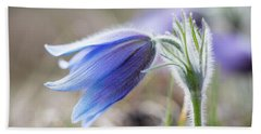 Pasque Flower's Silver Grey Hair Hand Towel
