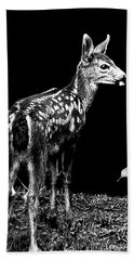 Bath Towel featuring the photograph Passing Fawn by Adria Trail
