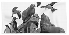 Patagonian Wildlife Hand Towel