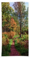 path in a beautiful country Park on a Sunny autumn day Hand Towel