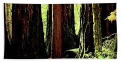 Path Through The Forest Edge . 7d5432 Hand Towel