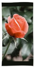 Peachy Rose Hand Towel