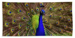 Bath Towel featuring the photograph Peacock Showing Breeding Plumage In Jupiter, Florida by Justin Kelefas