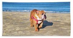 Peanut On The Beach Hand Towel