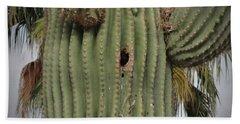 Peek-a-boo Cactus Wren Hand Towel