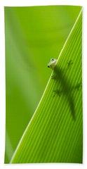 Peek A Boo Gecko Hand Towel