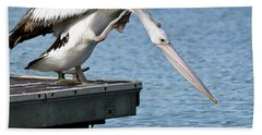 Pelican Beauty 66633 Hand Towel by Kevin Chippindall