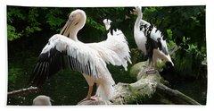 Pelican Hideaway Hand Towel
