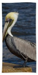 Hand Towel featuring the photograph Pelican Profile 2 by Jean Noren