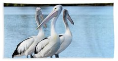 Pelicans 6663. Hand Towel by Kevin Chippindall