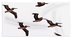 Hand Towel featuring the photograph Pelicans At Half Moon Bay by Steven Richman