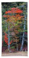 Pennsylvania Laurel Highlands Autumn Bath Towel by John Stephens
