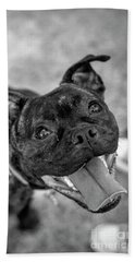 Penny - Dog Portrait Hand Towel