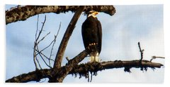 Bath Towel featuring the photograph Perched Bald Eagle by Sadie Reneau