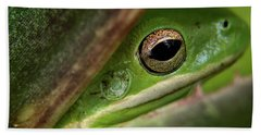 Frogy Eye Hand Towel by Denis Lemay