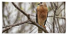 Perched Red Shouldered Hawk Bath Towel