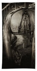 Percheron Draft Horse Hand Towel