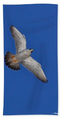 Peregrine Falcon I Bath Towel