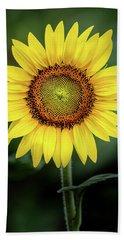 Perfect Sunflower Hand Towel