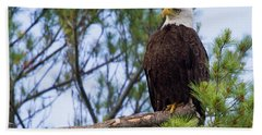 Perplexed Eagle Hand Towel